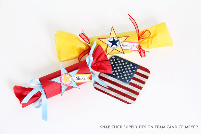 Flags-Stars-Candice-Meyer-4